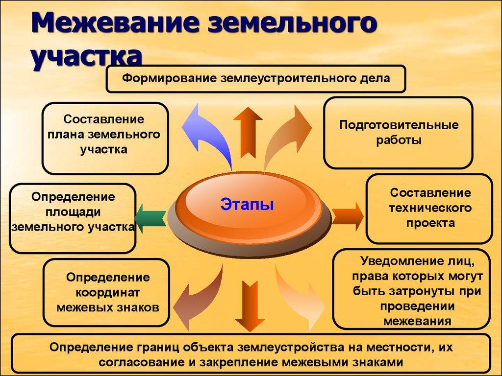 Этапы межевания земельного участка